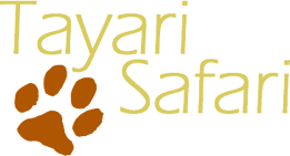 Logo Tayari Safari
