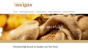 logo Bakkerij  ten Veen Brood en Banket