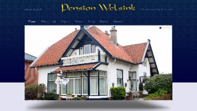 logo Welsink Pension
